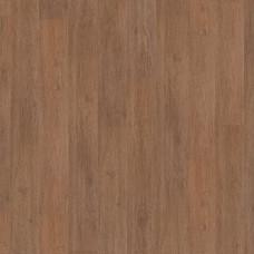 Oak Disco 504022059