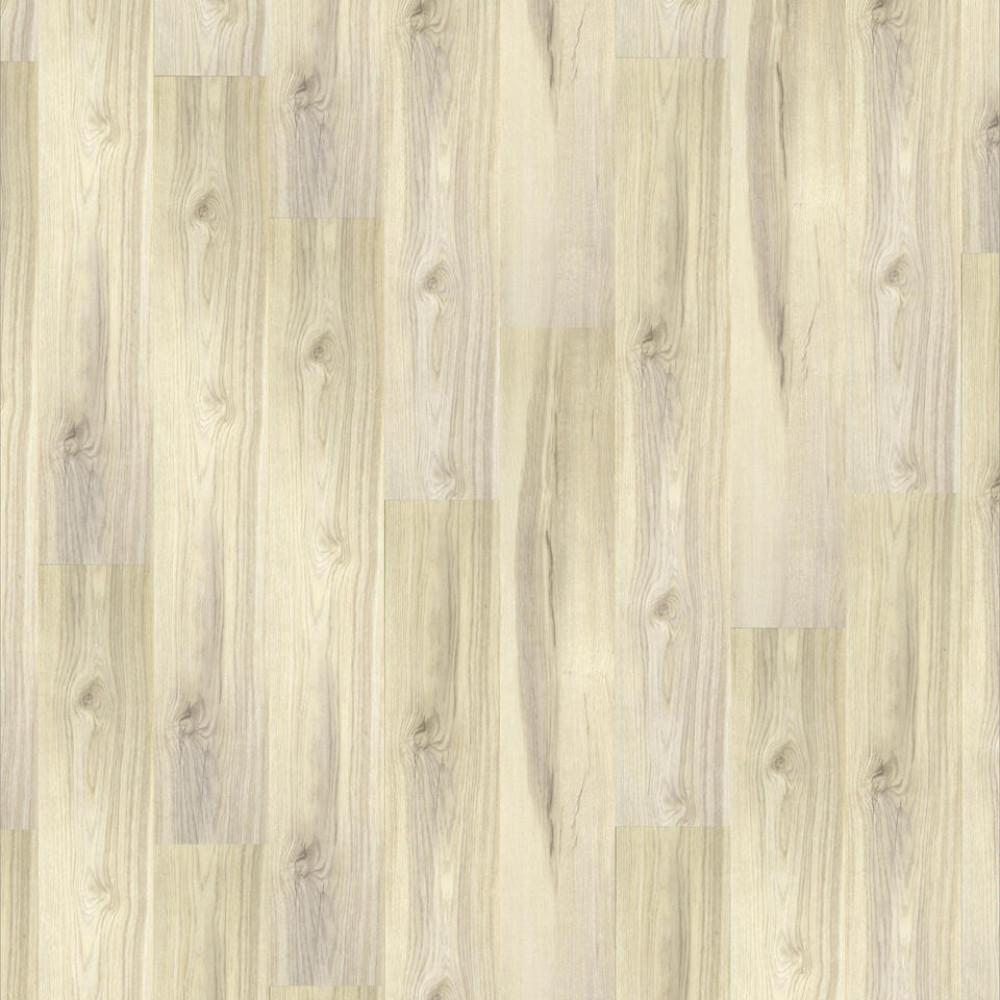 Oak Fiord 504022048