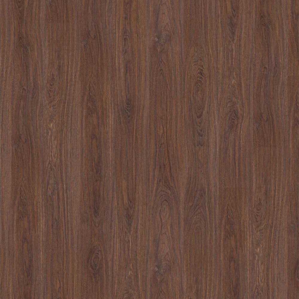 Oak Sunny 504022058