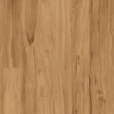 Яблоня янтарная 1426505