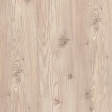 Балтийский сосна 1426510