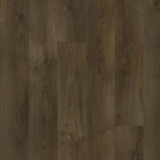 22841 Sherman Oak