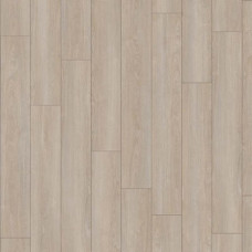 24232 Verdon Oak