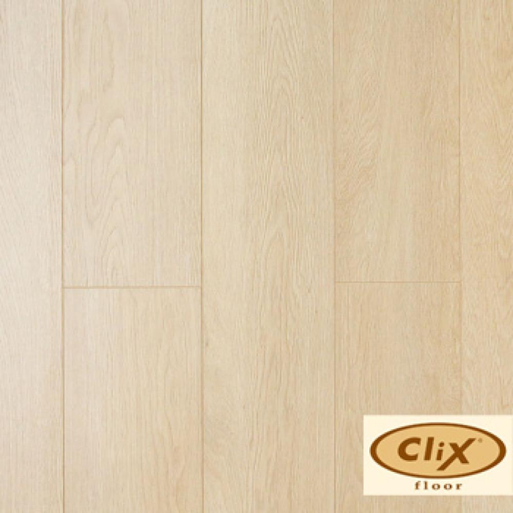 Дуб марципановый CXI 146