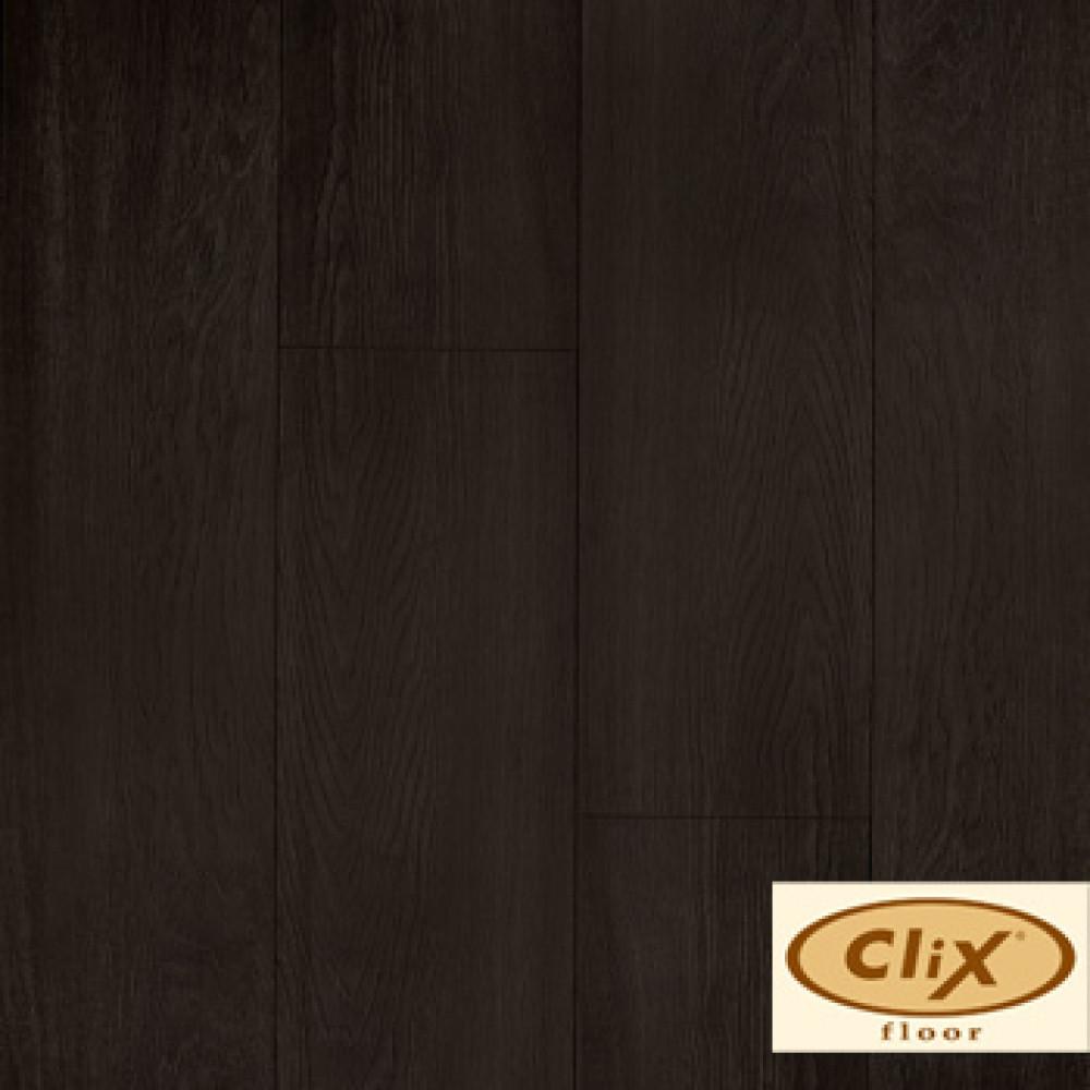 Дуб цейлонский CXI 148