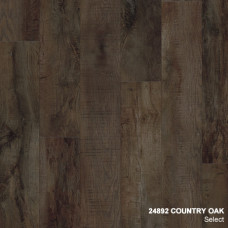 24892 COUNTRY OAK