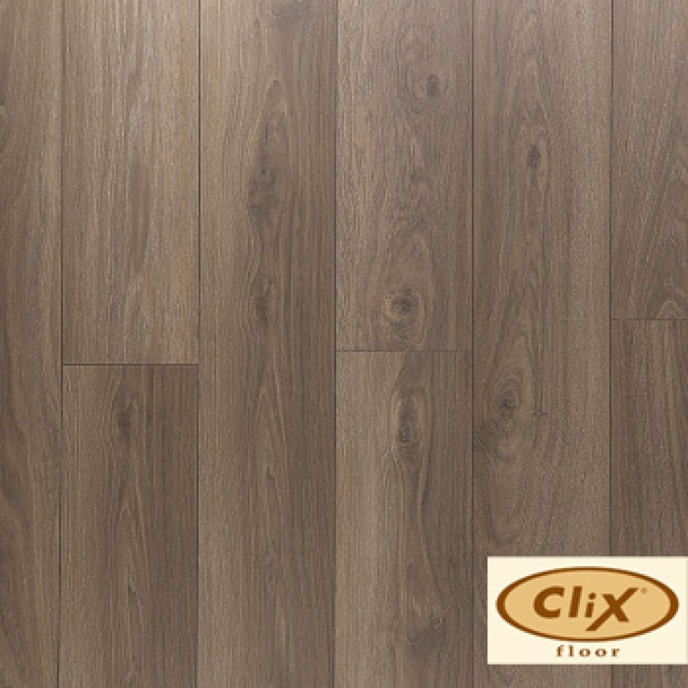 Дуб кофейный CXP 087