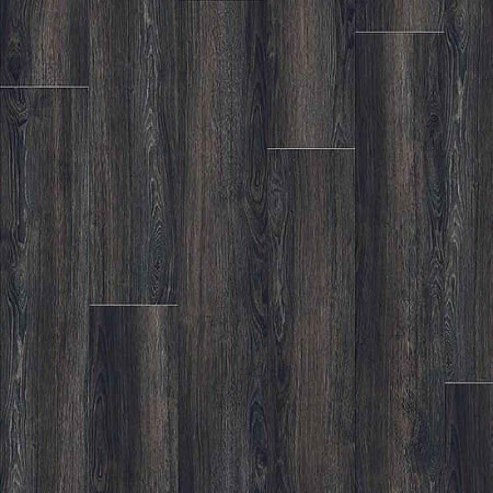 24984 Verdon Oak