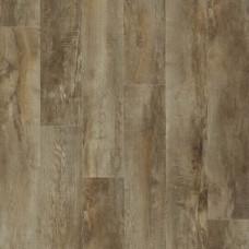 54852 Country Oak
