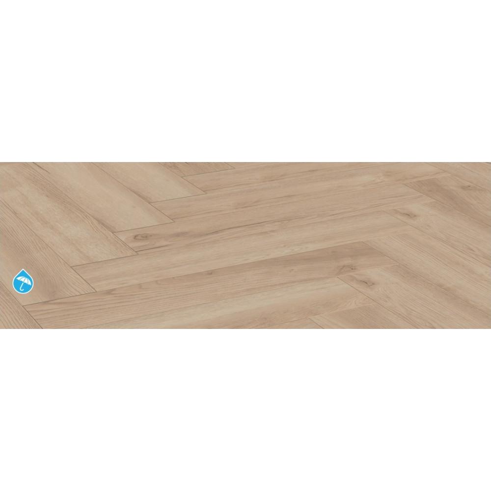 Toulouse Oak D3678