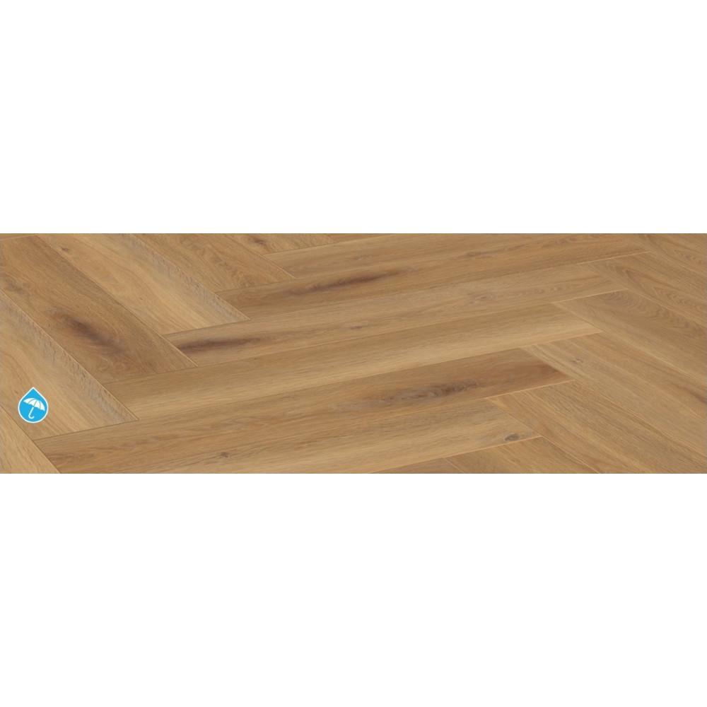 Pisa Oak D3861