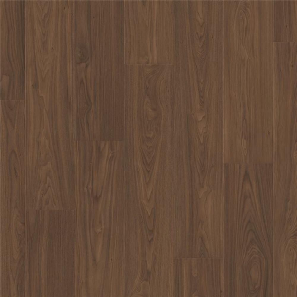Орех коричневый SIG4761