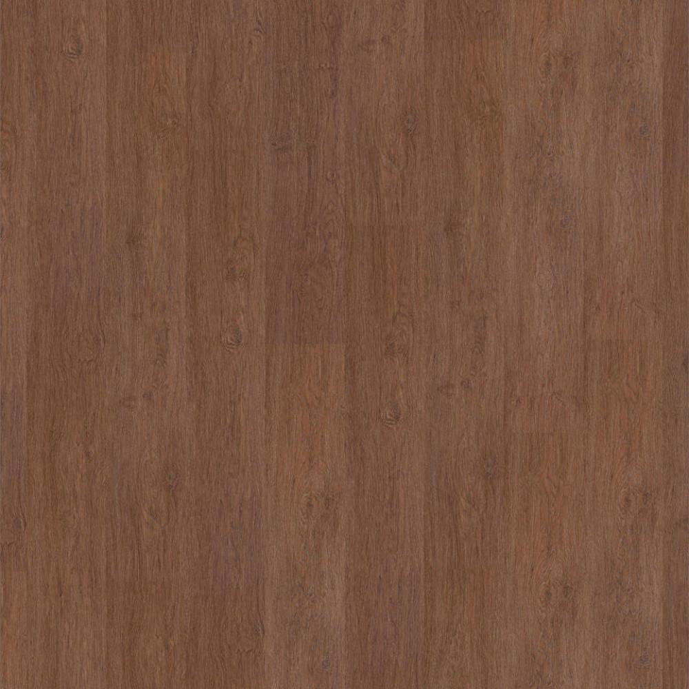 Oak Calido