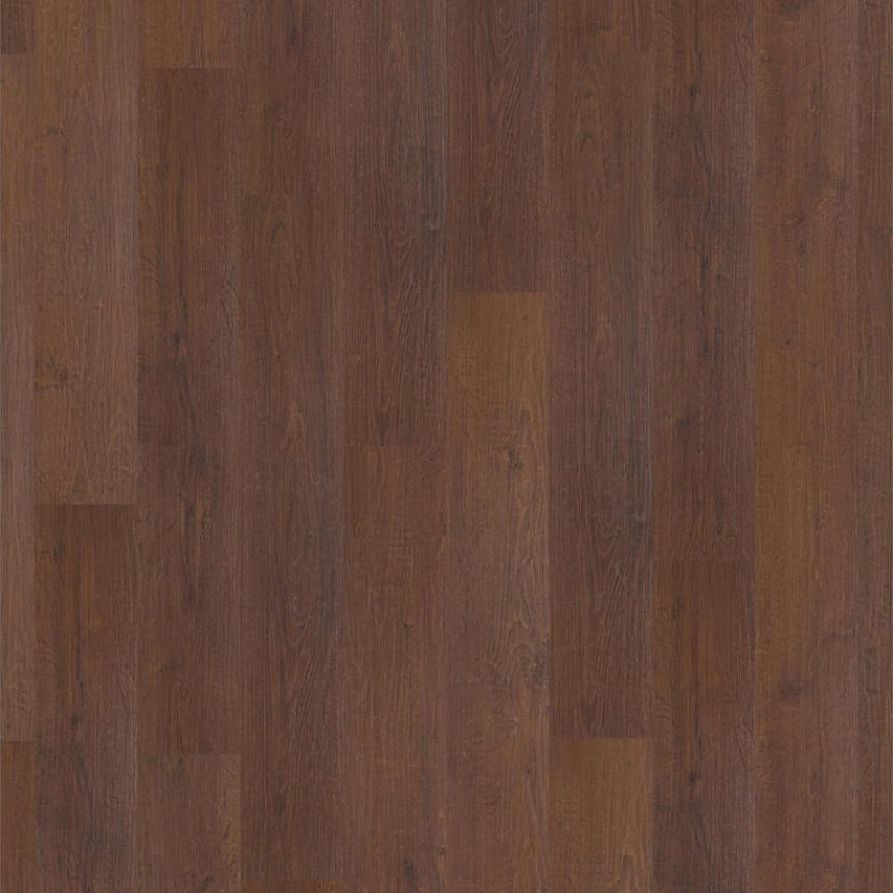 Oak Castano 504016052