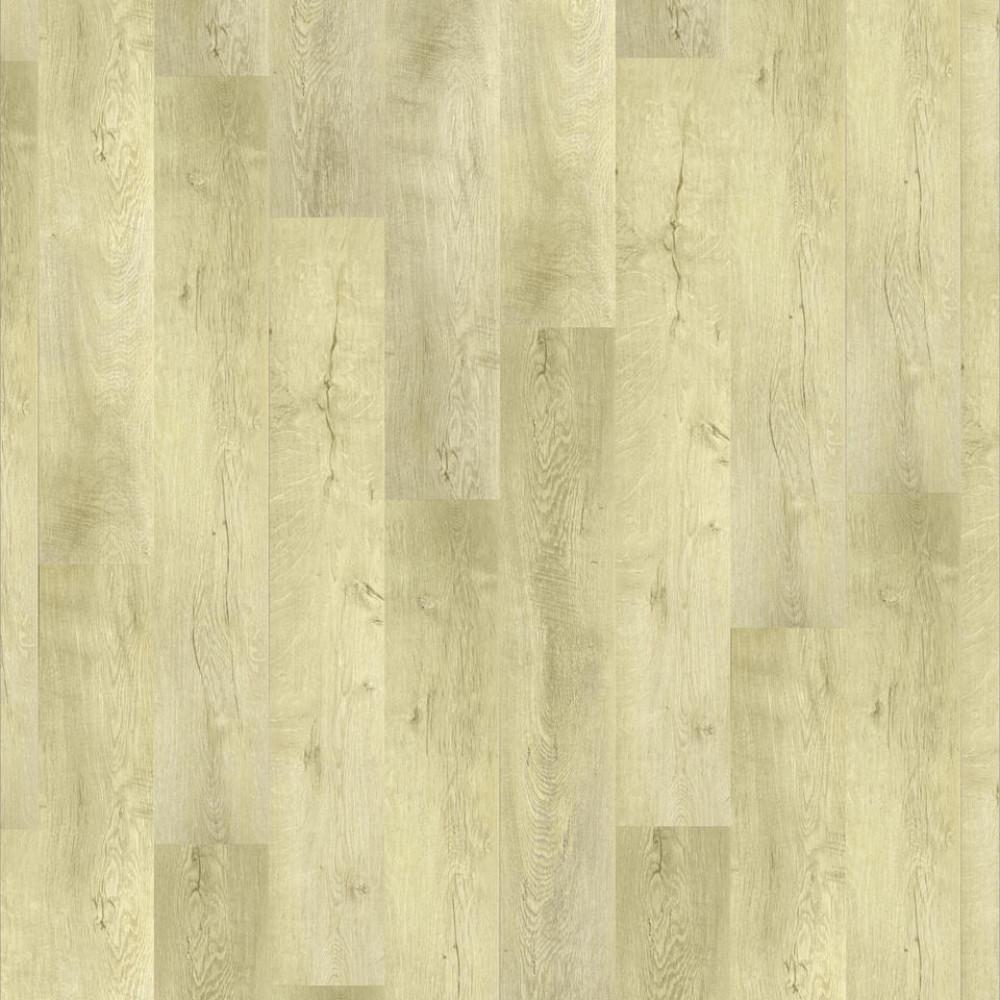 Oak Osorno 504016047
