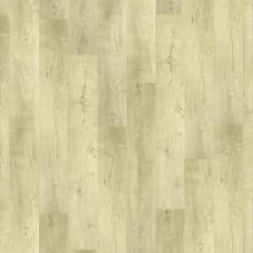 Oak Osorno