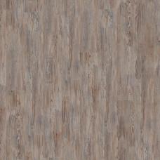 Oak Vivo 504016056