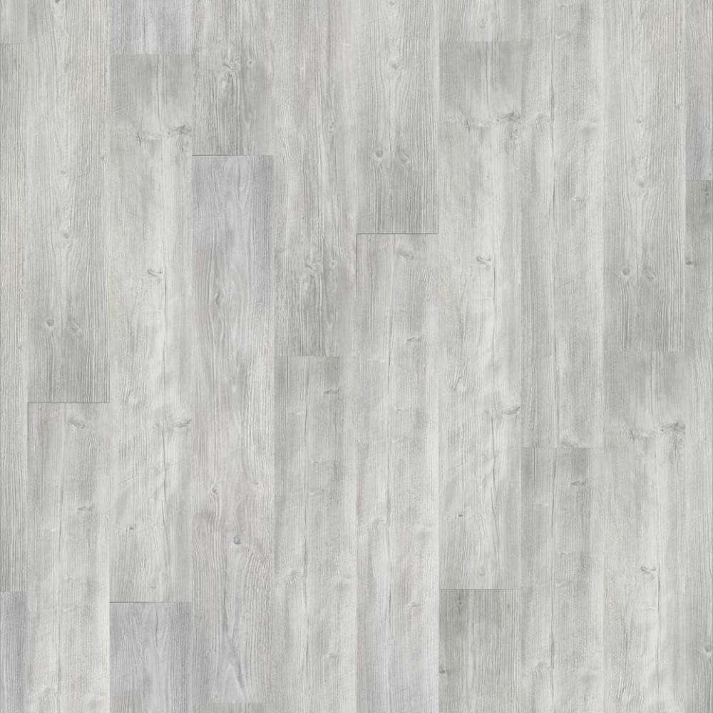 Pine Andante 504016048