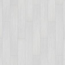 SPIRIT WHITE 504035063