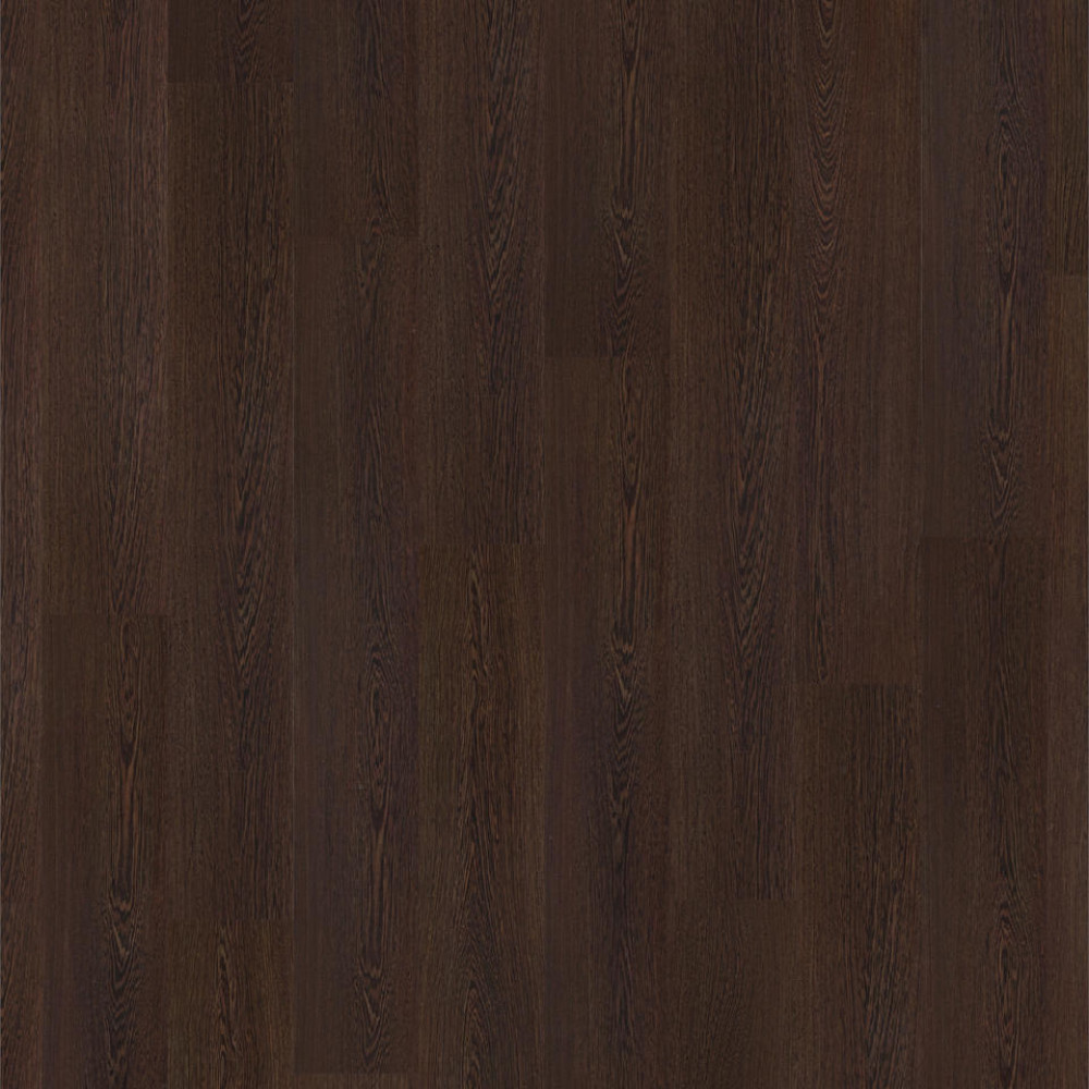 TANZANIAN WENGE 504035062